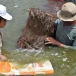 Bảo vệ môi trường để phát triển bền vững vùng nuôi thủy sản