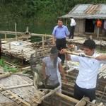 Mở hướng nuôi cá lồng bền vững trên lòng hồ Hòa Bình