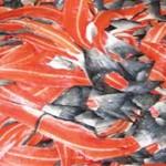 Tận dụng phụ phẩm từ chế biến thủy sản