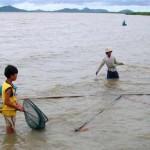 Kiên Giang sôi động nghề săn cua biển giống