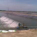 Quản lý môi trường nước trong ao nuôi tôm khi thời tiết chuyển mùa