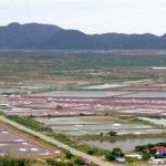 Chuỗi Hội nghị Bàn tròn Nuôi trồng Thủy sản tập trung chuyên đề bệnh EMS trên tôm