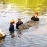 Tiền Giang: Nông dân nuôi tôm nước lợ có một vụ mùa thắng lợi