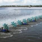 Giám sát môi trường nước trong ao nuôi tôm