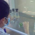 5 nguyên tắc sử dụng kháng sinh cho nuôi thủy sản