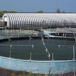 Ấn tượng trang trại nuôi tôm sạch lớn nhất thế giới