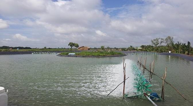 Khung lịch thời vụ nuôi trồng thủy sản năm 2016