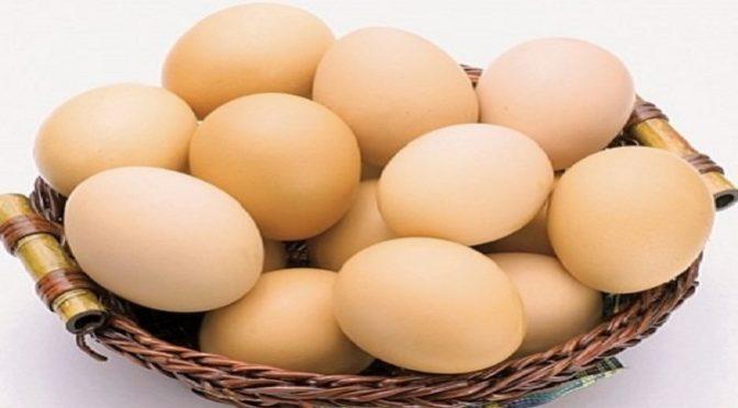 Tăng cường miễn dịch tôm thẻ chân trắng bằng lòng đỏ trứng (IgY)